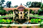 """Lily Pond Reflections"" at Balboa Park, San Diego, CA"